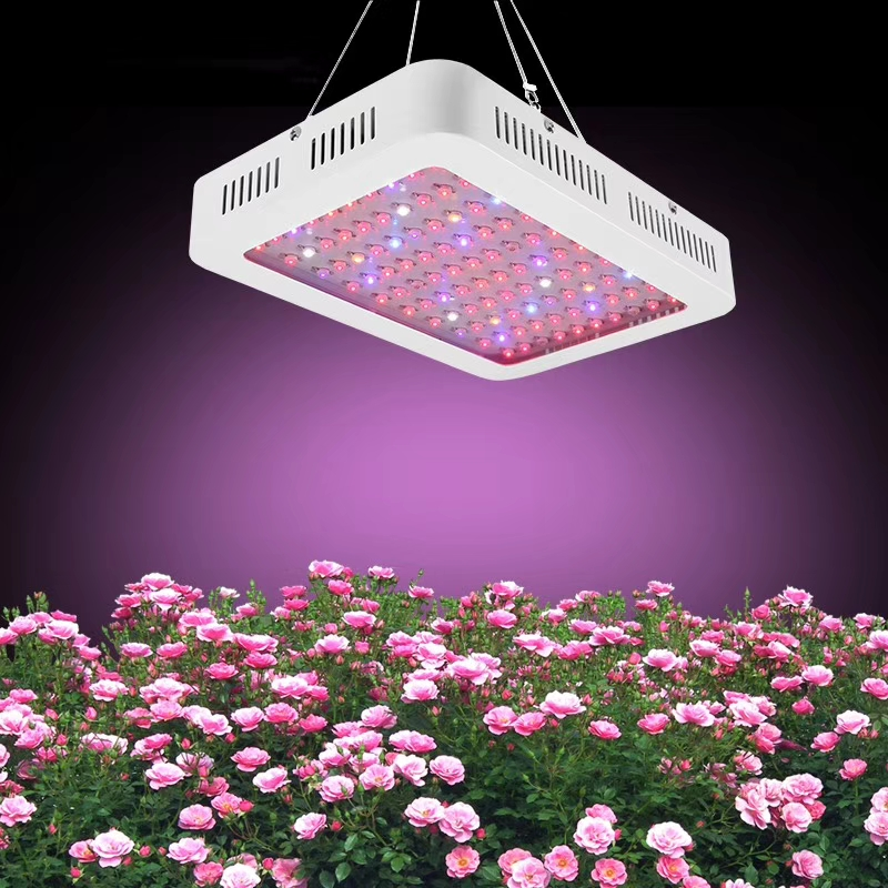 Led Grow Lamp Lights