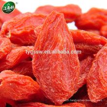 organic goji berry/Fresh gojij berry/chinese wolfberry