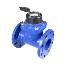 """Agriculture Irrigation Water Meter (2"""" to 12"""")"""