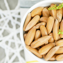 High Quality Unique tasty nutritious Chinese Pine Nuts / Kernels