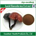 Polysaccharid Lucid Ganoderma Auszug Pulver
