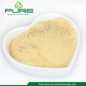 Top Quality Bulk Maca root Powder / Maca Powder
