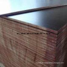 Pegamento fenólico de contrachapado de madera de abedul para construcciones