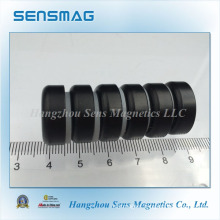 Permanent Magnetic Assembly with Pot Magnet Epoxyed Coated