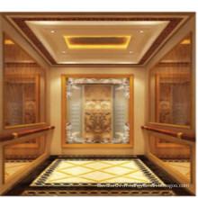Fjzy-ascenseur (FJ8000-1) ascenseur passager Fjzy-229