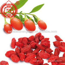Fruits secs chinois de nexia wolfberry