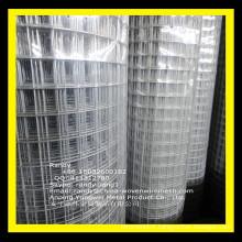 "YW-- 2x1"" 14G 36""x100' Black PVC Coated GALVANIZED Welded Wire Mesh Rolls"