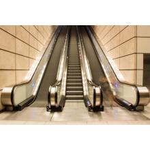 Escalator de Shandong Fjzy Elevator Co., Ltd