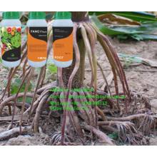 Root Promoter Liquid Aminoroot Fertilizer Drip Irriagtion