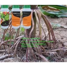 Líquido Promotor de Líquido Aminoroot Fertilizer Drip Irriagtion
