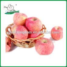 Chino fresco rojo Fuji Apple / fuji manzana