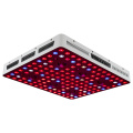 Planta de interior de espectro completo Grow Light 600w