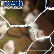 factory price lowes chicken wire mesh roll for plastering/fence
