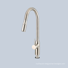 Stainless steel rotatable pull-out faucet shower head