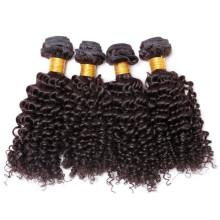 100 keine Gewirr natives mongolischen versauten lockiges Haar, mongolische reines Haar Weben
