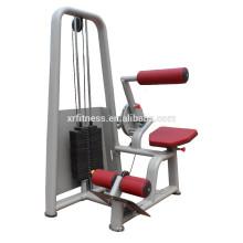 Équipement de gymnastique commercial Back Extension