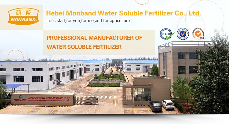 MAP 100% water soluble Fertilizer