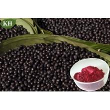 Polyphénols 10%, 40%; Proanthocyanidines 40%, 60%; Flavones 10% Acai Extract