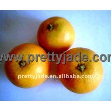 Dulce mandarina