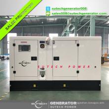 Groupe électrogène diesel de moteur de 24kw Lovol 1003G