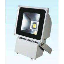 (80W) LED Flood Light (360TG)
