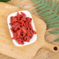 ORGANIC PLUMP ATTENTIVE GOJI BERRY