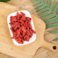 Goji Berry Organik Superfood Non GMO