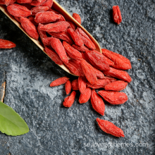 Lågt bekämpningsmedel Goji Berries 2018 New Harvest