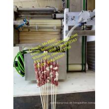 Kebab Maker Maschine / Satay und Kebab Spießmaschine
