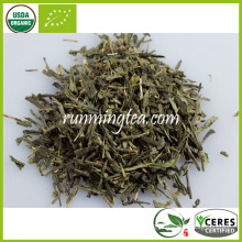 Organic Sencha Green Tea Import Export