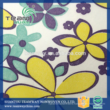 Printed Polyester Spunbond Nonwoven Fabric for Teamway