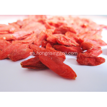 Ningxia Lycium goji berry wolfberry clase A