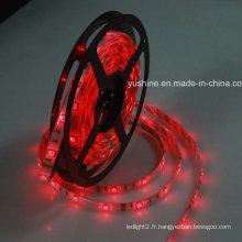 Bande LED flexible 12V 5050SMD 60PCS étanche