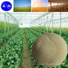 Nutriment composé minéral de chélate d'acide aminé de bore de Ca