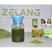 Дистрибьютор Bulk Matcha Зеленый чай порошок Органические Матча Private Label