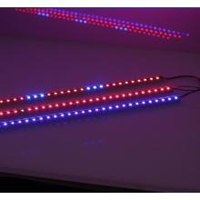 10W светодиодные панели завод растут Lights DC12V 50 см RGB