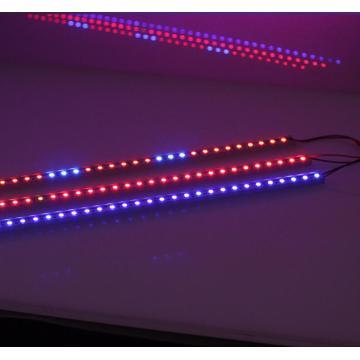10W LED-Stab-Anlage wachsen Lichter DC12V 50cm RGB