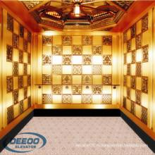 Вилла Стеклом Дешевый Отель Античный Лифт Маленький Пассажирский Лифт