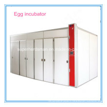 High Hatching Rate Egg Incubator for Sale