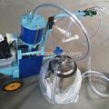 with cluster piston typed milking machine