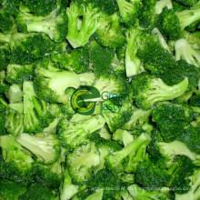 Hochwertiger IQF Frozen Brokkoli Floret von 2015