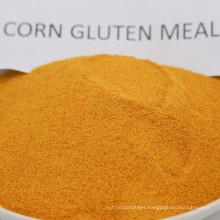 Yellow Feed Grade Corn Gluten Meal 60% Protein Powder