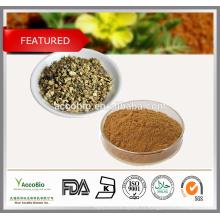 Extrait de Tribulus Terrestris 100% naturel Saponines 40% 50% 60% 80% 90%, 95% UV Protodioscine 20% 40%, 60% HPLC