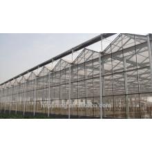 Policarbonato flexible de la cubierta del invernadero de la pared doble del precio al por mayor