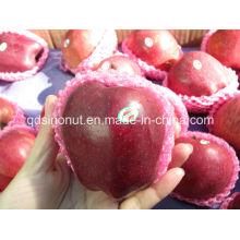Chino Huaniu Apple (40/44)
