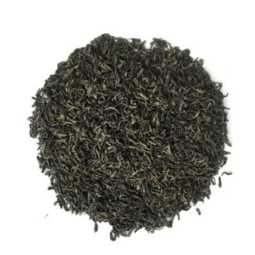 green chinese tea gunpowder 3505 chunmee tea 41022 china the verde