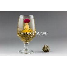 Qing Tou Yi L'amour de l'amarante rouge Thé à fleurs
