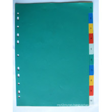 10 Pages Colored PP Index Divider With Number Printed (BJ-9021)
