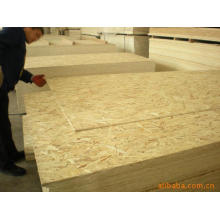 OSB Board for Furniture