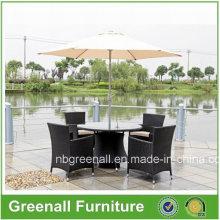 Muebles de jardín de mimbre / Juego de comedor de patio / Juego de patio al aire libre